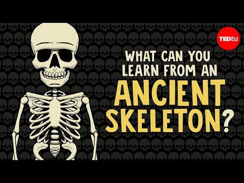 What can you learn from ancient skeletons? - Farnaz Khatibi