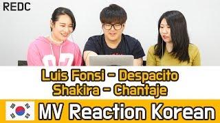 Video [REDC] 건강한 남미노래 HOT 2곡 리액션 (Luis Fonsi - Despacito / Shakira - Chantaje) Korean MV REACTION MP3, 3GP, MP4, WEBM, AVI, FLV Juni 2019