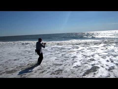 Emerald Isle Beach Black Drum – Nov 2012