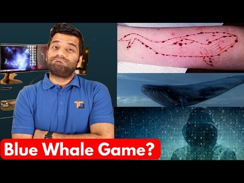 Blue Whale Game - The Killer Game - Stay Away!!!