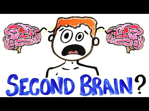 You Have A Second Brain