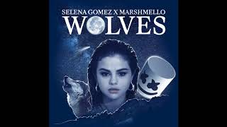 Video Selena Gomez, Marshmello - Wolves (Male Version) MP3, 3GP, MP4, WEBM, AVI, FLV April 2018