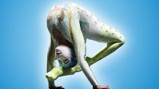Video Alegria by Cirque du Soleil - Official Trailer MP3, 3GP, MP4, WEBM, AVI, FLV Juni 2018