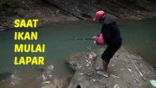 Video JADI HEBOH..! Saat Pancing Bapak ditarik ikan Baung MP3, 3GP, MP4, WEBM, AVI, FLV Juni 2018