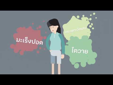 thaihealth สสส.องค์กรแห่งสุขภาวะ