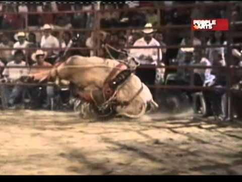 video accidente rodeos: