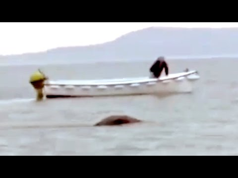 Loch - Hello! It´s Mary, Add to Favorites & Subscribe: http://goo.gl/9bztXD Best Mystery Videos: http://amazingmysteryvideos.blogspot.com.es/ Believe in Mythical Cr...