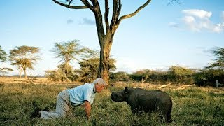 Nonton David Attenborough     With Fangirls   Hd 1080p  Film Subtitle Indonesia Streaming Movie Download