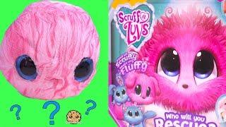 Video Fluffy Bath Water Plush Pet Blind Bag Ball ! Scruff A Luvs MP3, 3GP, MP4, WEBM, AVI, FLV Januari 2019