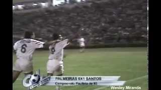 O Santos superou o Palmeiras (1 a 0), no Palestra Itália, pela Primeira fase do Campeonato Brasileiro 1993. Guga garantiu a vitória, marcando o gol da partida.