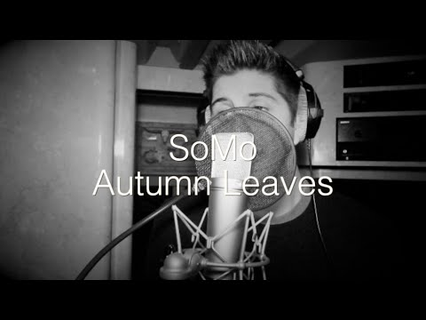 Chris Brown – Autumn Leaves (Rendition) by SoMo