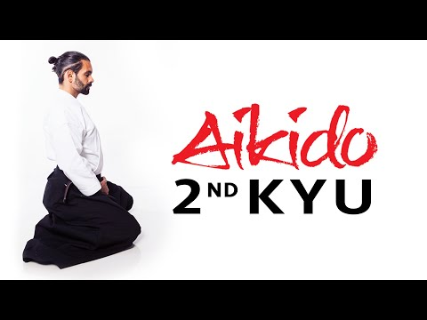 Aikido Techniques for 2nd Kyu Exam Test Requirements