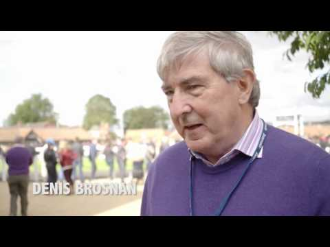 Tattersalls October Yearling Sale Book 1 Day 3 Video Review 2016