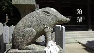 国生み神話の山 先山「千光寺」