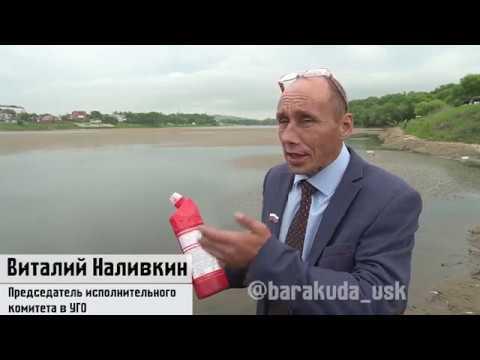 Виталий Наливкин очистил городское озеро