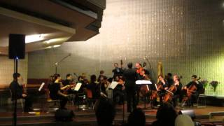 Berklee World Strings Plays