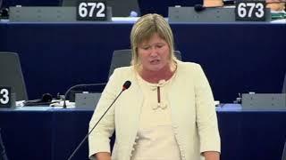 Felszólalás a Sargentini-jelentés vitájában