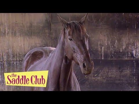 The Saddle Club - Foster Horse Part III   Season 02 Episode 21   HD   Full Episode