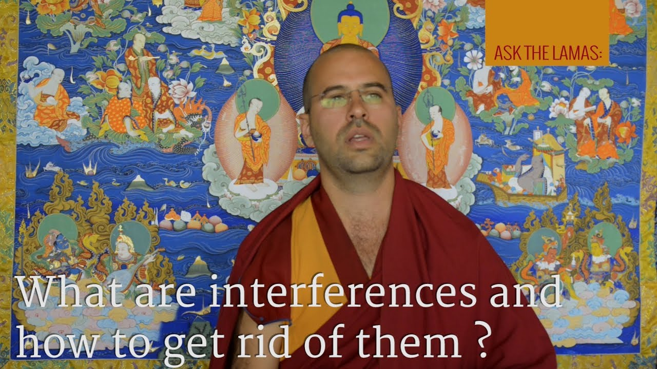 What are interferences and how to get rid of them?