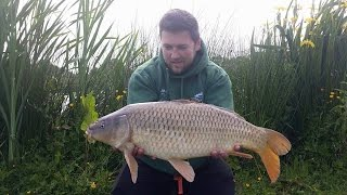 Episode 135 - Honeypot Lakes Day Ticket Essex Carp Fishing