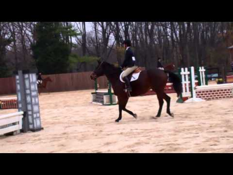 Lauren Steinhoff's Win in Novice Flat - 11/16/13