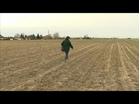 Osteuropas Landwirte leiden unter der Dürre: Kein End ...