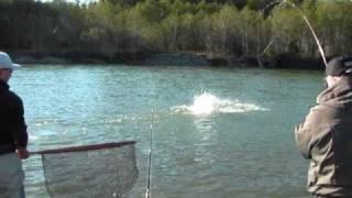 HOT - Coho Fishing - Kitimat River!
