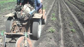 Мини-трактор. Окучивание картошки. Проба.