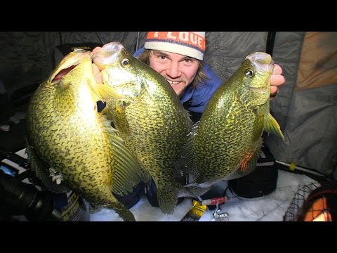 Hammering 16 inch Crappies – Uncut Angling – January 10, 2015