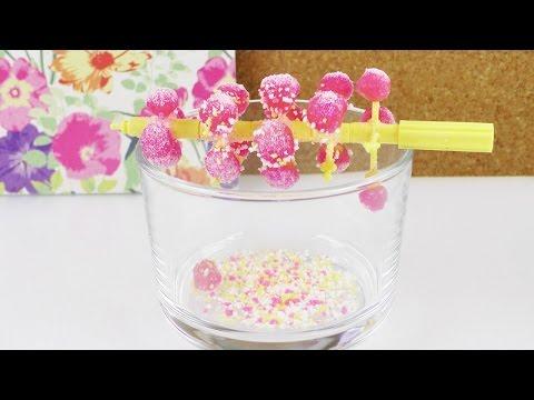 Popin' Cookin' DIY Süßigkeiten Baum SNACKTEST   Candy Tree Set   TEST mit Eva & Kathi
