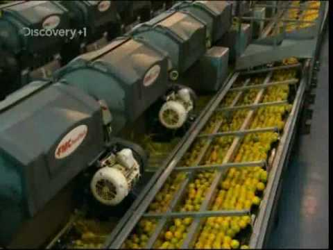 made - The process of making orange juice on a humongous scale. The Americans drink so much of the stuff I'm surprised they still have any left for export.