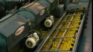 Video How Orange Juice Is Made MP3, 3GP, MP4, WEBM, AVI, FLV Januari 2019