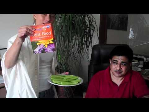 how to fertilize cucumber plants