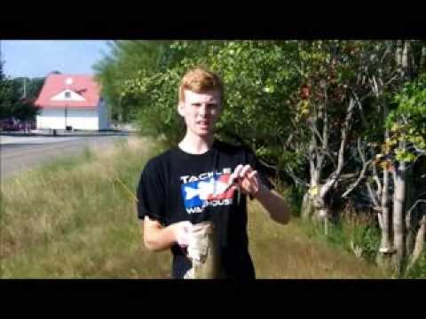 Maryland Pond Summer Bass