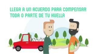 Registro de huella de carbono, compensación y proyectos de absorción de CO2