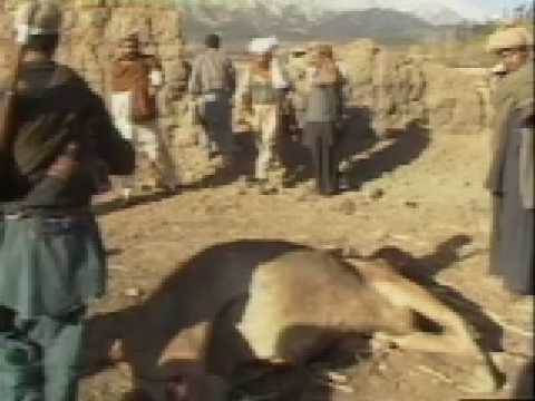 Afghanistan 1984 Scenes from a secret war    pt 2/4