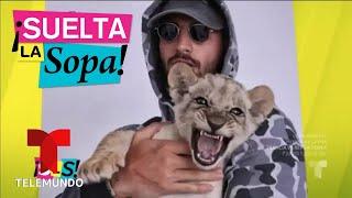 Maluma no aguantó más y dejó Instagram | Suelta La Sopa