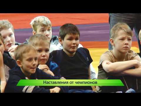 Звёзды спорта. 12.01.2017. ИК \Город\ - DomaVideo.Ru