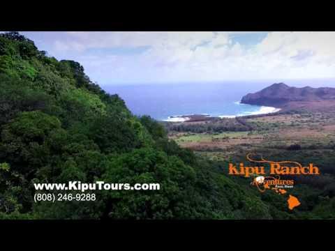 Things to do on Kauai   Kipu Ranch Adventures   Scenic Tours