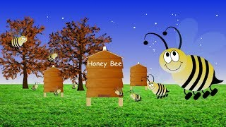 Honey Bee (Ads Free) YouTube video
