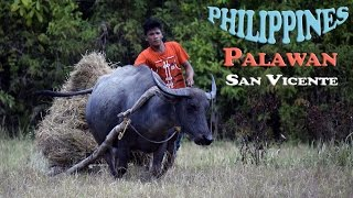 San Vicente Philippines  City new picture : PHILIPPINES N°11 : Palawan - San Vicente