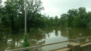 Camden (AR) United States  city photos gallery : Camden Arkansas flood waters May 20, 2015