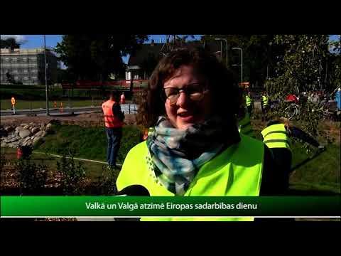 Video 355