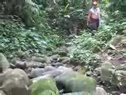Provincias Ecuador, Santo Domingo de los Tsáchilas