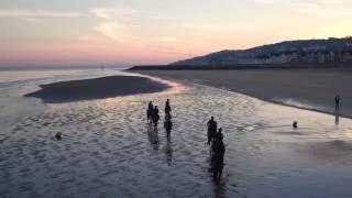 - Les Poneys de polo sur la Plage de Deauville -