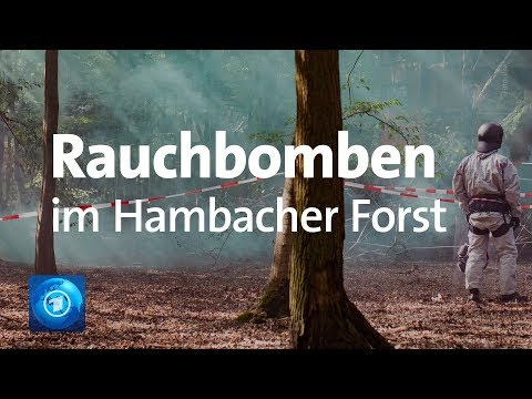 Hambacher Forst: Waldbesetzer vs. Polizei