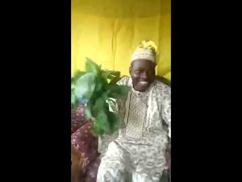 BABA OLOYIN, SESAN ADEWUSI EXPLAINS HOW YOU CAN USE BITTER LEAF AND HONEY TO BECOME RICH