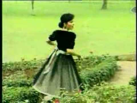 Download Lagu Santa Hoky - Setangkai Bunga Padi Music Video