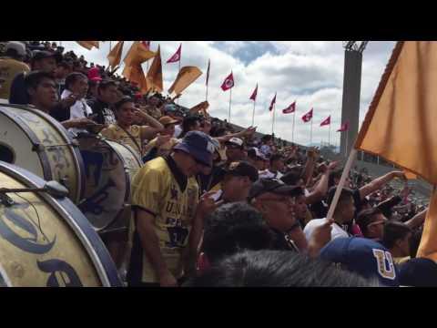 Pumas vs Tigres 2016 REBEL - La Rebel - Pumas