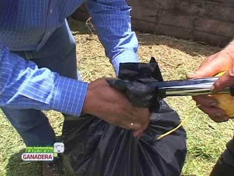 ensilaje en bolsa - Conozca el proceso de conservación de pasto; sin reducir su contenido de humedad.